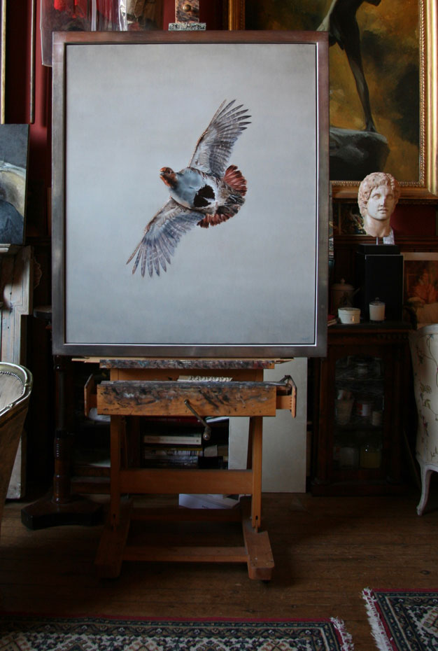 grey partridge in flight oil painting sporting art