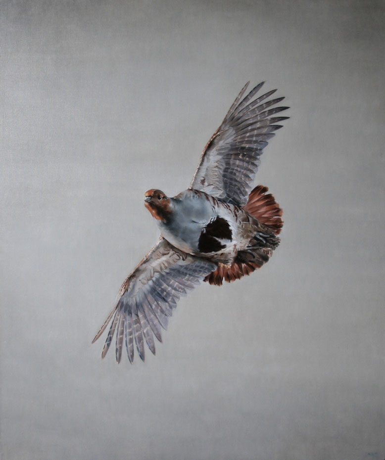 oil painting of Grey Partridge in Flight sporting art