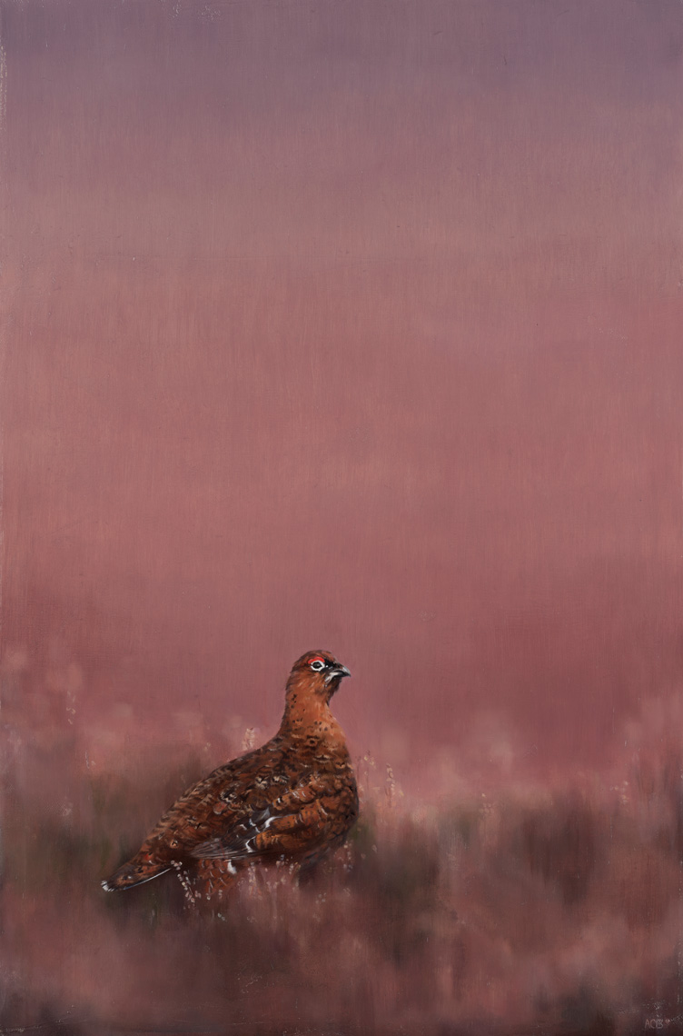grouse in heather oil painting sporting art